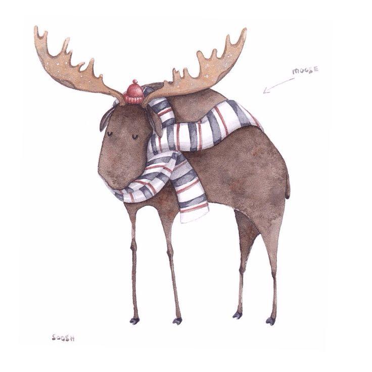 • a moose in the scarf • because autumn soon