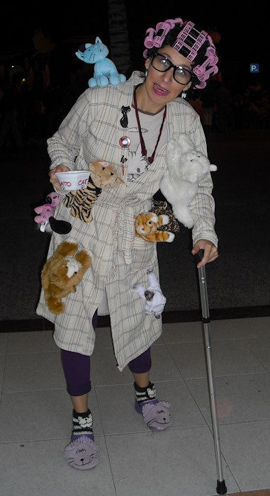 DIY Simpsons Crazy Cat Lady Halloween Costume Idea 4
