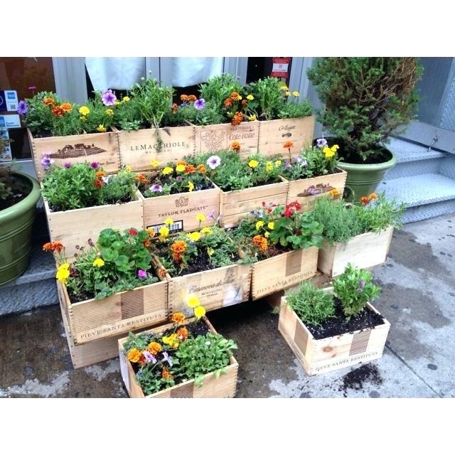 Tiered Vegetable Garden Design Garden Design With Wine Box Garden I Love The Tiered Effect Wine Box Ideas Wine Box Garden Garden Boxes Vegetable Garden Design