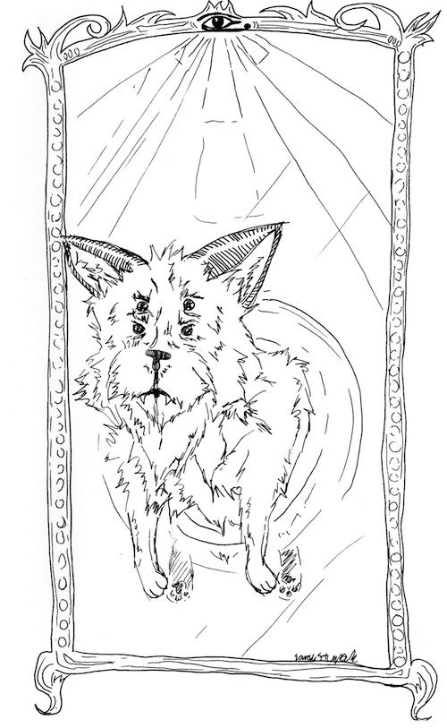 Free Printable Coloring Page For Adults How Much Is That Doggie In The Mirror