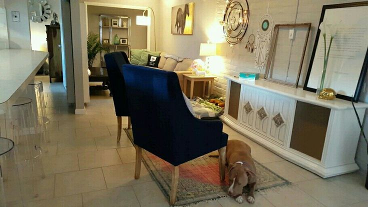 Living room, record player, clear barstools, lamps, blue chairs