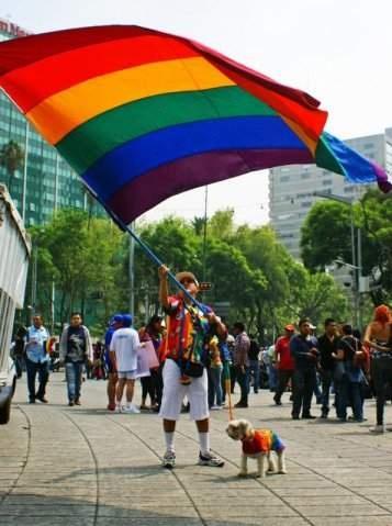 Mención honorífica categoría Manifestaciones Culturales / Lugar: Av. Paseo de la Reforma (Bandera Orgullo Gay)