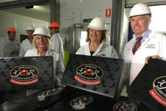 """""""Australia's richest woman Gina Rinehart is forging new ties with China, hot on the heels of the fierce battle for the Kidman cattle empire which she purchased last year. Today she laun… https://beartales.me/2017/02/07/australian-gina-rinehart-launches-wagyu-brand-bound-for-chinas-top-restaurants/"""