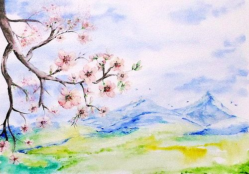 Spring fields by Adriana Mijaiche