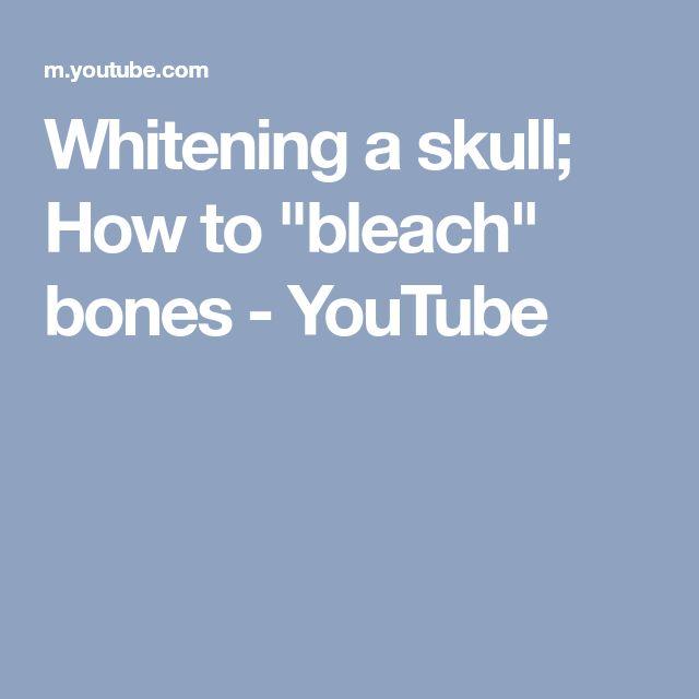 """Whitening a skull; How to """"bleach"""" bones - YouTube"""