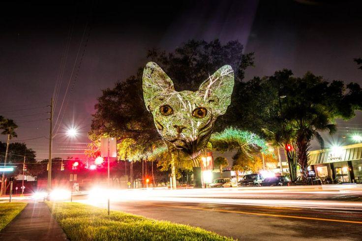 Kent Duvarlarına Yansıtılan Dijital Sokak Sanatı * Bigumigu