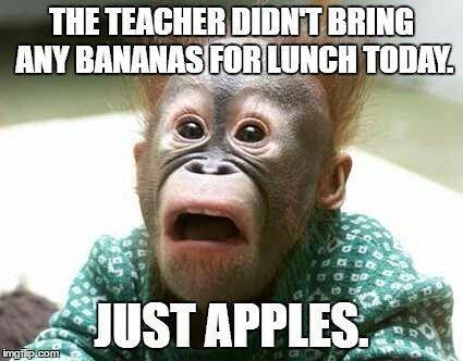 852e097b60a9c68b490cbeb245c700e3 orang the teacher 71 best esl expat funny memes images on pinterest funny memes,Esl Meme