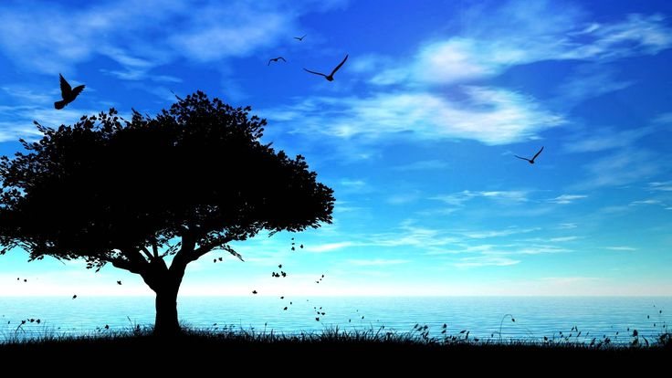 Peace of Mind Hd wallpapers 1080p, Hd wallpaper, Nature