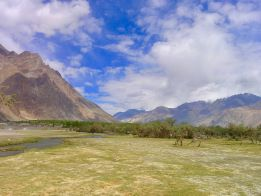Nubra is a tri-armed valley located to the north east of Ladakh valley. Diskit the capital of Nubra is about 150 km north from Leh town, the capital of Ladakh district, India. Local scholars say that its original name was Ldumra.