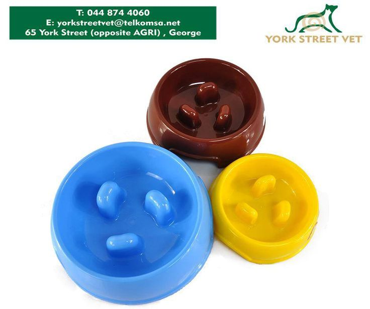 The Anti-Gulp Bowl is an innovative pet bowl is designed to slow rapid eating, promote regular digestion and prevent bloating and discomfort. With this, your #dog will learn to eat slower. Available at #YorkStreetVetShop. #ilovemydogshttps://www.facebook.com/Yorkstreetvetshop/photos/pb.646016452164207.-2207520000.1439134276./796055830493601/?type=3