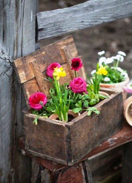 alte gegenstände Frühlingsblumen in Holztruhe