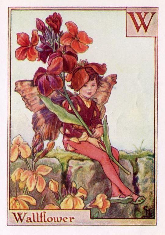 Wallflower Alphabet Letter W Flower Fairy Vintage Print, c.1940 Cicely Mary Barker Book Plate Illustration