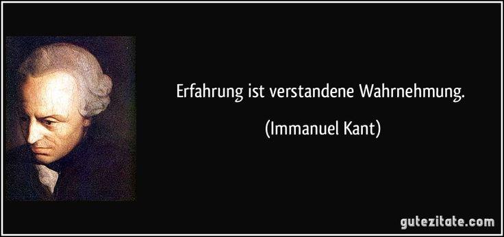 Erfahrung ist verstandene Wahrnehmung. (Immanuel Kant)