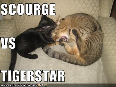 Tigerstar vs Scourge. I never thought I'd see a meme on this, and have the picture that full of accuracy... ^true dat^