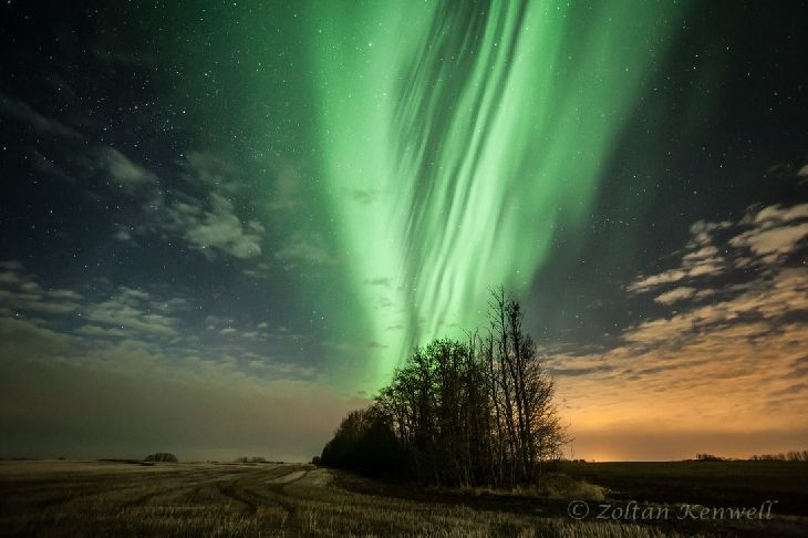 Aurora Borealis - Edmonton, Alberta, Canada