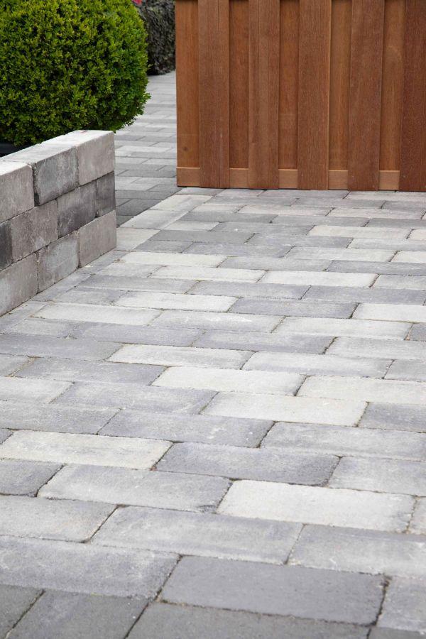 TUMBELTON GOTHIC is een getrommelde betonsteen zonder deklaag. De randen van de steen worden mechanisch in een trommel bewerkt. Hierdoor krijgt de steen een verouderd uiterlijk. Een mooie steen met een gunstige prijsstelling !