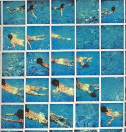 David Hockney. I wish I had enough pola film to do something like this.