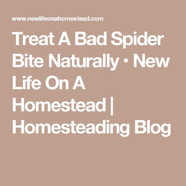 13 best Spider bites images on Pinterest Spider bites, Brown - mauvaises odeurs canalisations salle de bain