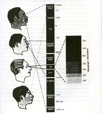 Black People Have Melanin | Black People : black folks best kept secret: MELANIN