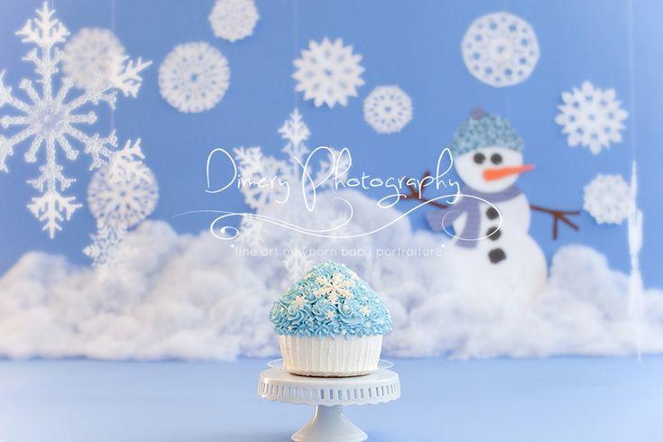 Winter Onderland Cake Smash