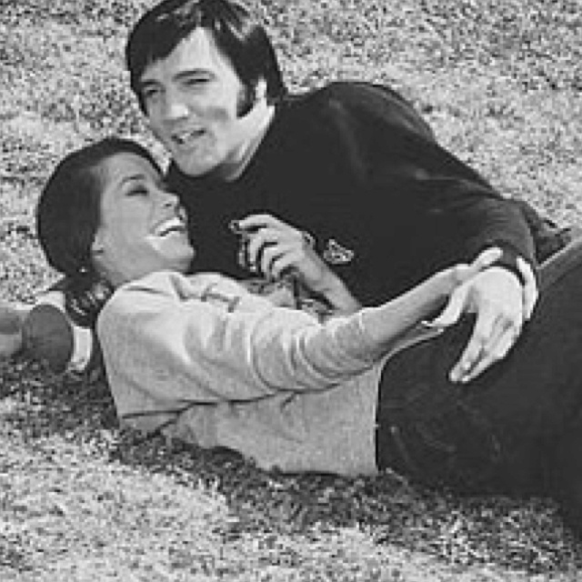 mary tyler moore essay Essay:greatest conservative tv shows from conservapedia this series launched the career of mary tyler moore dirty jobs: essay: greatest.
