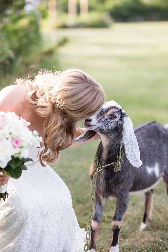 summer farm wedding   Natural Bliss Photography   Glamour & Grace