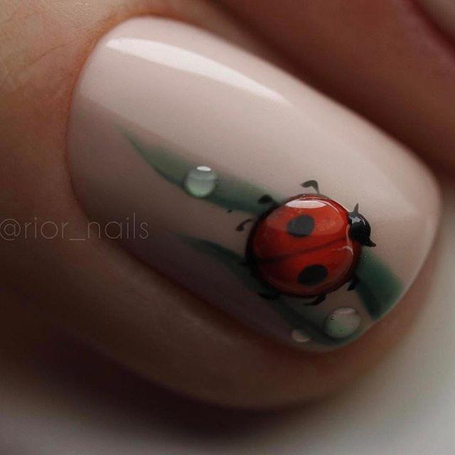 Best 25 ladybug nails ideas on pinterest for 3d nail salon midvale utah