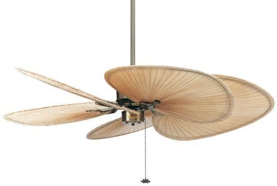 Ventilador de techo Fanimation ISLANDER sin luz, aspas de palmera