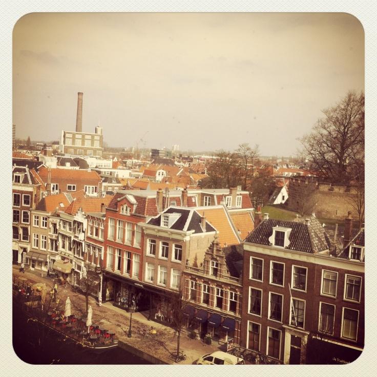 Leiden, Nieuwe Rijn