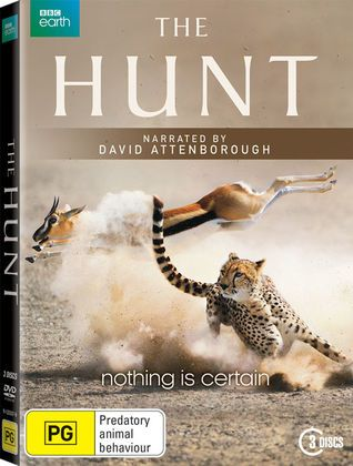The contests between predators and prey are the most critical events in nature…
