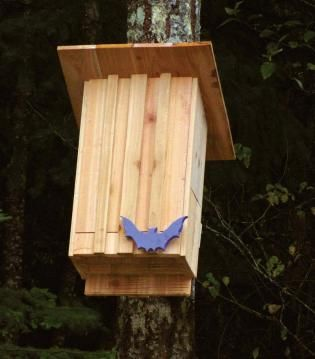 Build a Bat House ~ Complete instructions & plans.