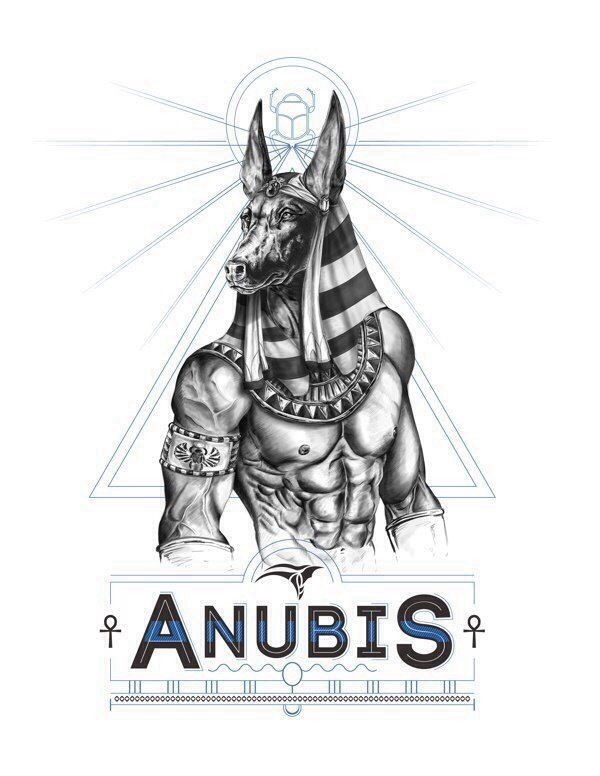 Anubis was the most important god of the dead but he was replaced during the Middle Kingdom by Osiris.