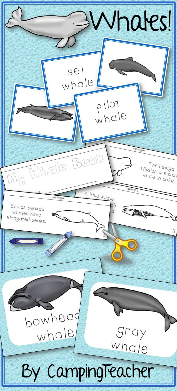 Whale flip book, matching center cards, and posters.