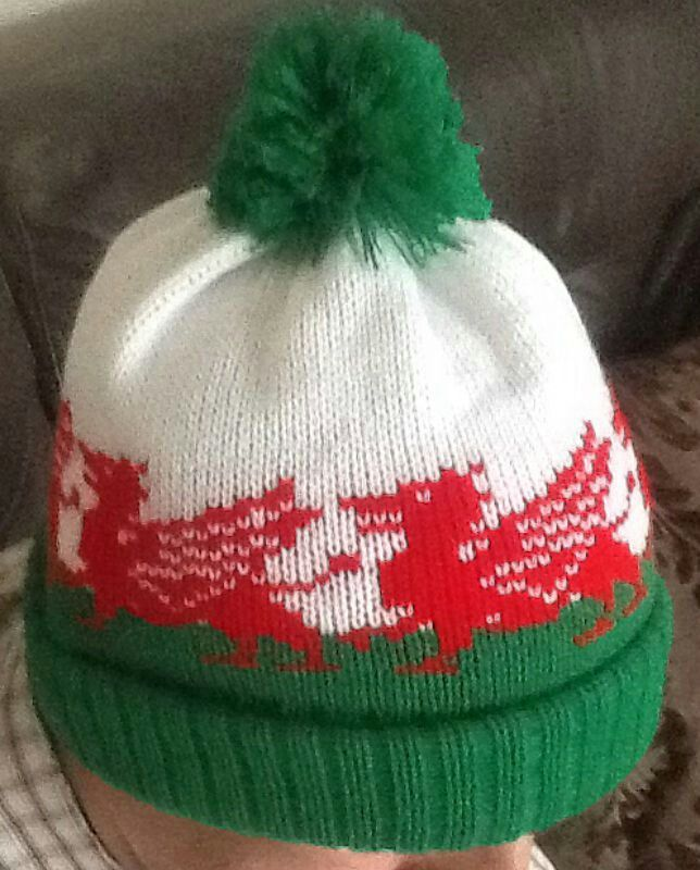 Welsh dragon Knitting and Crochet Pinterest Welsh dragon