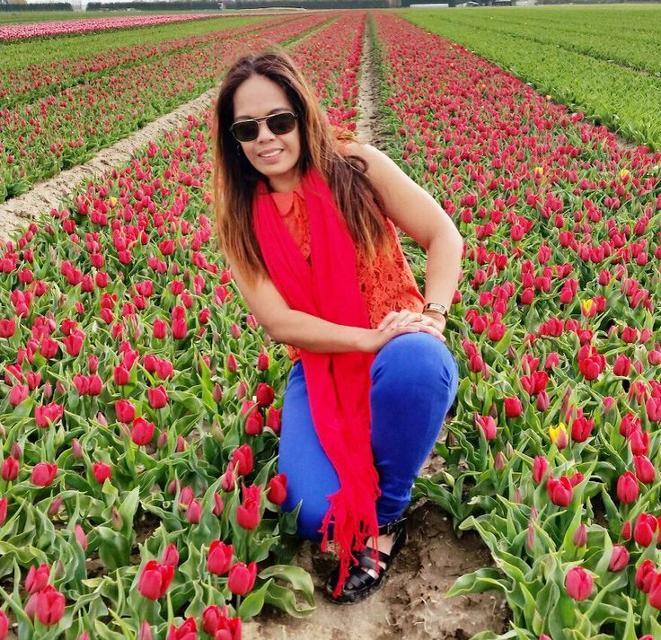Contrast of Red,orange, blue With beautiful Red Tulip..