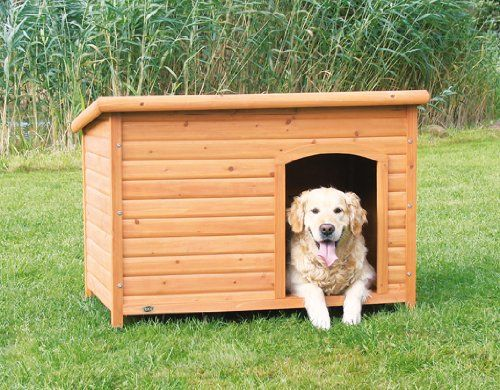 TOP 5 BEST SELLERS (according to amazon.com) Choosing the right outdoor doghouse is not an easy issue. You have to pay attention to the right choice because a proper house is essential for the health ang the safety of your best friend! Choose the right size Most importantly, your pet must be able to comfortably …