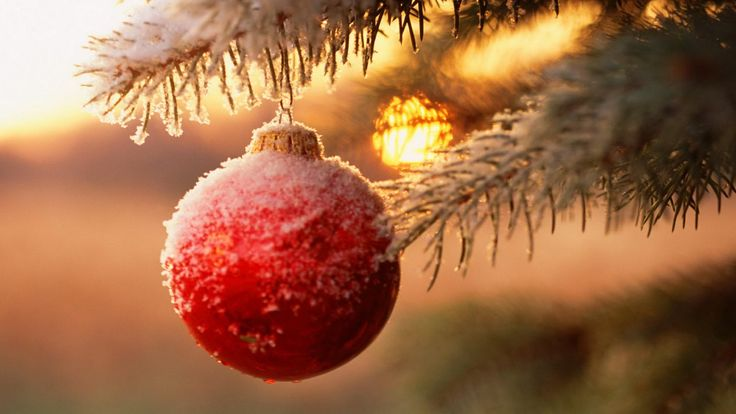 Snowy Christmas Ball in Tree - http://www.fullhdwpp.com/holidays/christmas/snowy-christmas-ball-in-tree/