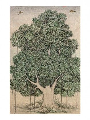 Banyan Tree Printed Botanical Artwork on Paper-Mahaveer Swami- 18in x 12in