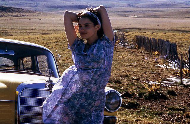 ダルの「ベティ・ブルー 愛と激情の日々」の画像