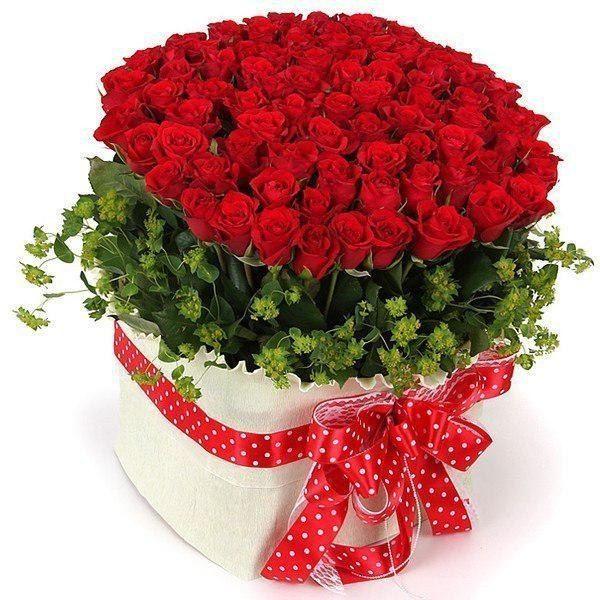 Доставка цветов оптом по санкт-петербургу цветы домашние каталог фото купить