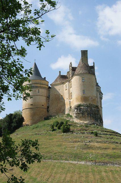 Chateau de Bannes 24 Dordogne - France
