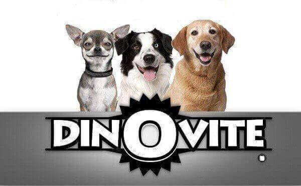 Dinovite Smelly Dog Dinovite For Large Dogs Dinovite At