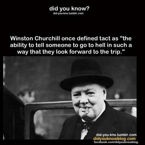 Quotes On Winston Churchill: 24 Best Winston Churchill Quotes Images On Pinterest