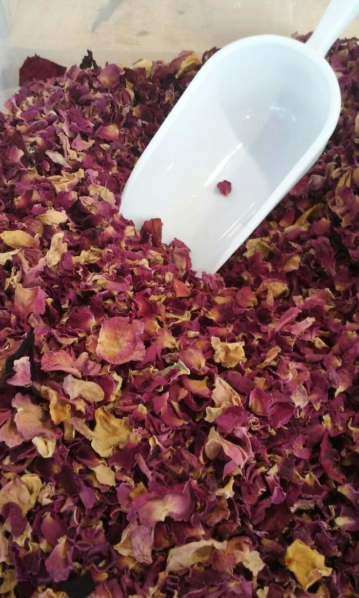 Petali di rosa damascena.