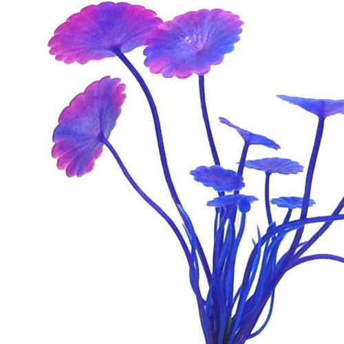 10x Plastic fish tank aquarium Purple Plants Fish Tank Grass Ornament Landscape Decoration. Yesterday's price: US $3.15 (2.59 EUR). Today's price: US $2.93 (2.41 EUR). Discount: 7%.