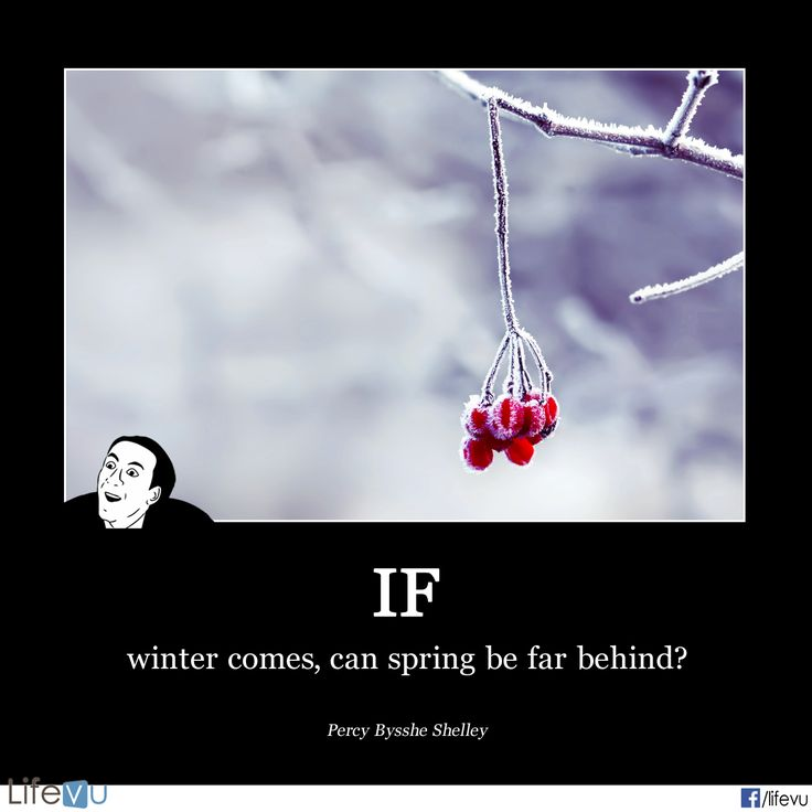 if winter comes spring is not far behind essay In this post, she discusses how to write a good first line (or opening line) for a book, novel, short story, essay, or article with a declarative sentence cultivating a winter garden is an easy, natural way to lift your spirits.