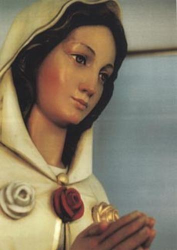 Rosa Mistica.. su nombre lo dice todo