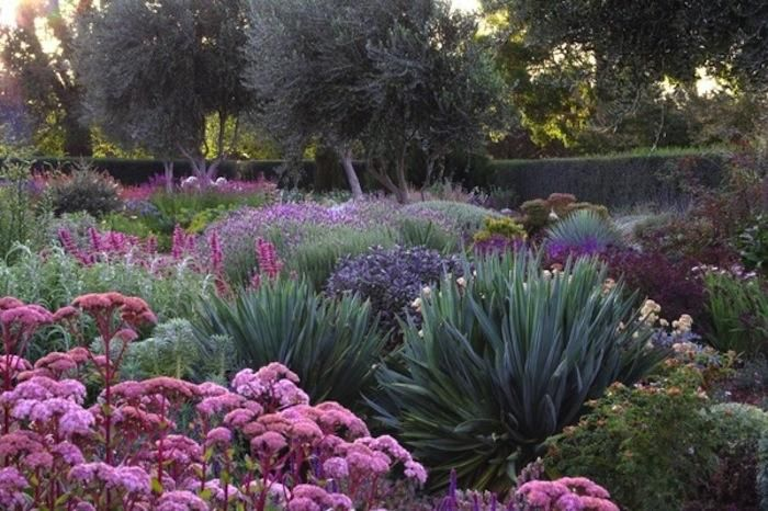 Lambley Nursery - Australian garden that needs watering 4 times a year