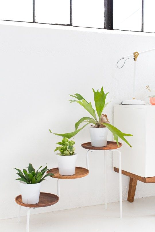DIY acadia wood plant stand   sugar & cloth