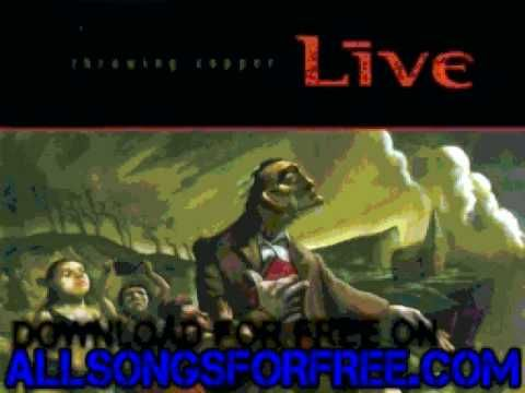 live - The Dam At Otter Creek - Throwing Copper (+playlist)